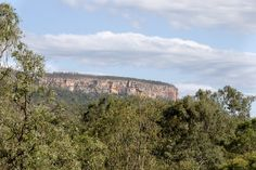 Do you love nature and history?Spend a day exploring the historical walking tracks, wildlife and breathtaking scenery of Cania Gorge National Park. Holiday Park, Exploring, Grand Canyon, Attraction, National Parks, Scenery, Wildlife, Walking, History