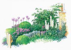Hauseingang Bepflanzung