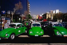 Mexico city is famous for,amongst other things, its VW taxis that fill all streets,lanes and roads