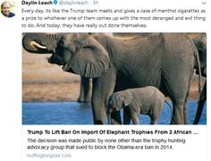 #humoroutcasts #Africa #elephants #politics #meanness #killing