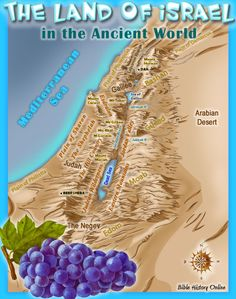 The Land of Israel in the Ancient World.  2 versions....big kid and little kid