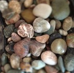 Collecting rocks is something that is fun and that the whole family can do. If you like that sort of thing. For some people, collecting rocks probably seems like a waste of time. But, for others, like me, we collect rocks almost everywhere we go.