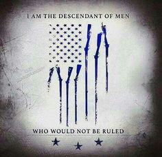 I got this from 'The Three Percenters' page on facebook. Awesome picture!