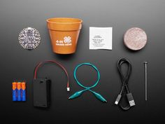 Grow Your Own Clovers Kit with Circuit Playground Express Young Engineers, Stainless Steel Nails, Clovers, Diy Electronics, 4 H, Chromebook, Grow Your Own, Fun Diy, Playground