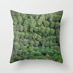 Young pine forest 6809 Throw Pillow by metamorphosa - $20.00