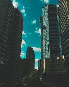 Sunny sunday in Toronto . Sunny Sunday, Toronto Life, Never Stop Exploring, Just Go, Wilderness, Skyscraper, Wanderlust, Explore, Instagram Posts