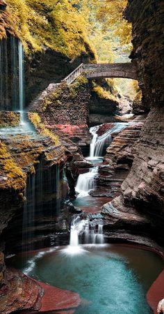 Watkins Glen State Park ~ New York
