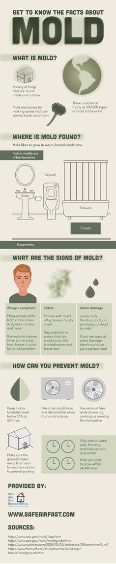 Is there mold in your home? If you suffer from a runny nose, itchy eyes, and coughing while at home, you might be dealing with mold. Take a look at this San Francisco mold remediation infographic to find out what to do next.