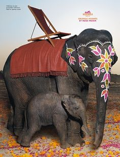 Hermes Campaign 2008 - Photographer Thierry Le Goues--I want these elephants! Elephant Love, Elephant Art, Travel Ads, Hermes Paris, Ad Art, Gentle Giant, Animals Of The World, Mothers Love, Print Ads