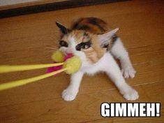 Gimmeh
