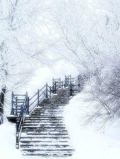 Winter and Snow/karen cox.Walking in a winter wonderland … Winter Szenen, Winter Love, Winter Magic, Winter White, Winter Walk, Snow White, Winter Season, Winter Wonderland, Snow Scenes
