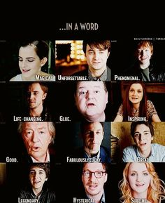 """Describe your Harry Potter experience in one word"" oh Hagrid"