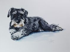 PLEASE CONTACT ME BEFORE YOU PURCHASE TO CHECK FOR AVAILABILITY.   MEDIUM SIZE CUSTOM PET PORTRAIT IN WATERCOLOUR.  Commission an original watercolor portrait of your family pet.   This listing is for the following:  Paper size Size 20 x 15  White background  The painting is unmatted and unframed and will be signed on the front .    Before I get started I will need the following from you:  A high quality photo of your pet, natural light preferred as this gives better detail to paint from…