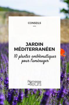 jardin méditerranéen plantes (1) Mediterranean Garden, Landscape Plans, Beautiful Gardens, Letter Board, Cards Against Humanity, How To Plan, Outdoor, Hangars, Design