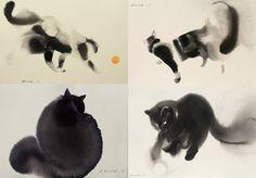 Endre Penovac gato cat8