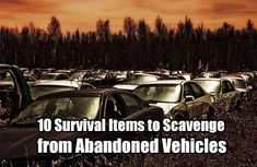 10 Survival Items to Scavenge from Abandoned Vehicles. Looting, scavenging, call it what you will. When the SHTF, you might need to do a little scavenging