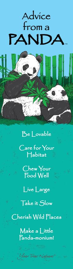 """Chew your food well."" Advice from a Panda #mother #panda"