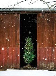 Barn Christmas http://www.pinterest.com/barb2229/barns-primitive-buildings-red-decor/