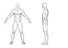male body template male body outline front and back i then used just