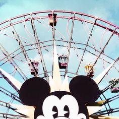 Cool shot of the Ferris wheel