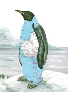 Print of Paper Collage Art Penguin Art Antarctica Map Art Arctic Iceberg