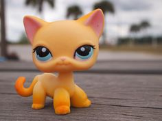 Lps I have this one Lps Littlest Pet Shop, Little Pet Shop Toys, Little Pets, Lps Popular, Lps Collies, Custom Lps, Lps Cats, Palace Pets, Short Hair Cats