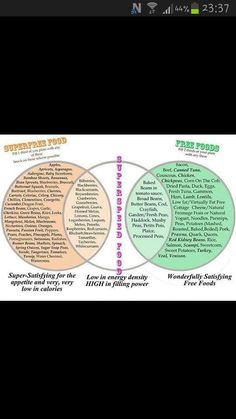 Types of Slimming world food