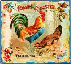 Riverside Royal Rooster Chicken Chickens Orange Citrus Fruit Crate Box Label Art Print.