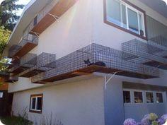 pasarelas para gatos