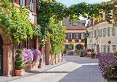 St. Martin, Rheinland-Pfalz.  ♥  ♥  ♥  Wir lieben Deutschland. Deutschland liebt die Trinkflasche aus Glas von EPiCO BOTTLES. Finde sie auf https://epicobottles.de/