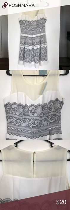 Skies are Blue Cream Dress NWT Lace detail (printed), sweetheart neckline with mesh. Skies Are Blue Dresses Midi