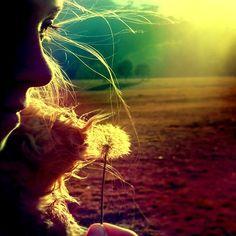 Make a Wish photography girl nature sun wish dandelion make a wish