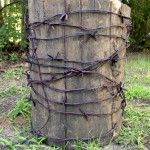 How to make fake barbed wire to use as party decor.