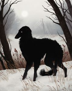 """""""Oracular Creatures And Arcane Spaces"""": Shadowy Animals Infiltrate Desolate Spaces In Illustrations y Jenna Barton Colossal Art, Wow Art, Pics Art, Dark Art, Pet Portraits, Art Inspo, Art Reference, Fantasy Art, Art Drawings"""
