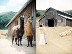 Image by Bwright Photography. Ranch wedding. in love with this