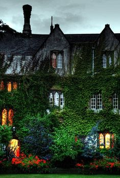 Truly old school green wall in Oxford, England.