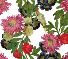Buy Nicolette Day custom fabric, wallpaper and home accessories by domesticate on Spoonflower Custom Wallpaper, Fabric Wallpaper, Designer Wallpaper, Pattern Wallpaper, Floral Prints, Art Prints, Pretty Patterns, Joy And Happiness, Red Berries