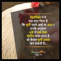 #DreamfirefactsIndia #Factsinhindi #Hindi Wierd Facts, Wow Facts, Intresting Facts, Real Facts, Crazy Facts, Funny Facts, Gernal Knowledge, General Knowledge Facts, Knowledge Quotes