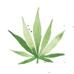 Cannabis Art Print