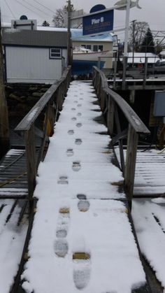 First tracks in Boothbay Harbor. https://www.facebook.com/photo.php?fbid=10151132398507219=a.10150257704322219.333764.180253152218=1