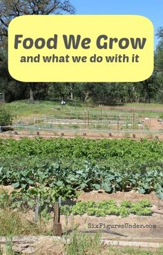 Food We Grow and What We Do With It