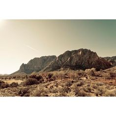 High noon, landscape photograph, southwest, mint green, tan brown,... ($30) ❤ liked on Polyvore