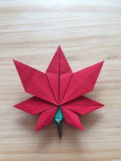 Maple leaf - Oh Kyu Seok   by yun geom kim
