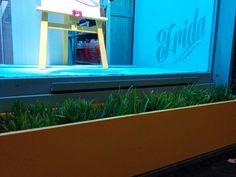 Corart - Diseño de Fachada Frida *macetero con plantas*