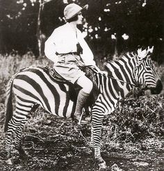 Osa Johnson on a zebra in Kenya, ca 1930, from  Women Travelers: A Century of Trailblazing Adventures, 1850–1950 by Alexandra Lapierre via Amy Azzarito, designsponge  #Osa_Johnson #Alexandra_Lapierre #Amy_Azzarito