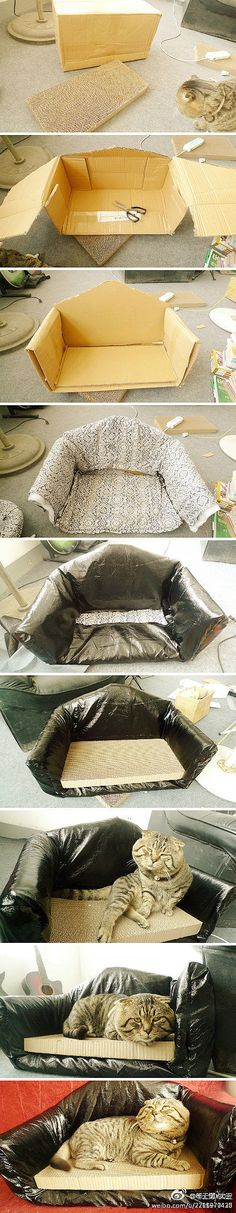 DIY Carton Cat Bed. I'd use something other than plastic because of chewers.