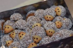 Hedgehog cookies biscuits go all year round - in the Christmas season, everyone . - Hedgehog cookies biscuits go all year round – however Christmas cookies are more in demand – ho - Cookie Salad, Easy Smoothie Recipes, Snack Recipes, Hedgehog Cookies, Le Diner, Pumpkin Spice Cupcakes, Fall Desserts, Easy Snacks, Creative Food