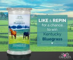 **KENTUCKY BLUEGRASS GIVEAWAY** Like, comment and REPIN this post for a chance to win a Kentucky Bluegrass candle. Did you know hundreds of thousands of people come from all over the world to visit Kentucky during Derby season, and tons of fans even come to visit our factory?? Where's YOUR favorite place to travel? What do you like most about it?   Contest winner announced Monday, May 11, 2015. Pinterest is not affiliated with this contest. #JICScents #KentuckyBluegrass #giveaway