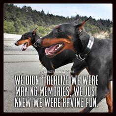 We didn't realize we were making memories, we just knew we were having fun. #crazyrebels #dobermans #quotes