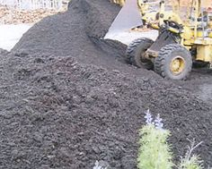 We provide best quality compost jungle mulch and rich dark garden #mulch.
